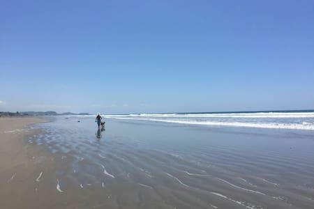 Sun, Sand, Fun and Paradise - Talo