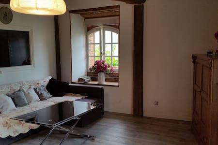 Charmant appartement avec jardin - Apartment