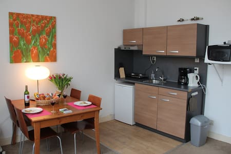 Central one-bedroom apartment VG - Leiden - Apartment