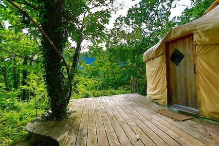 La belle jaune - Arrigas - Yurt