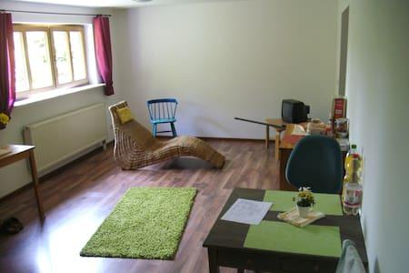 1,5 Zimmerwohnung in ruhiger Lage. - Kleinsendelbach