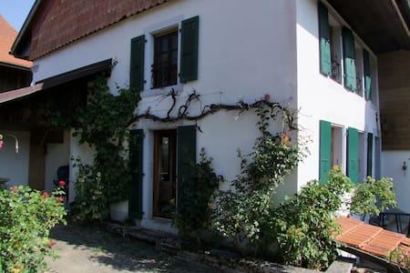 Les Arpents-Verts - Apartment