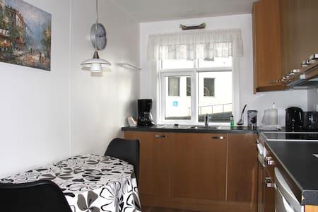 Háigardur Vik downstairs (ground floor) cosy flat - Apartmen