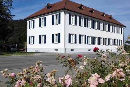 Attika Wohnung im Klettgau, 20 Min. Flughafen ZH - Wohnung