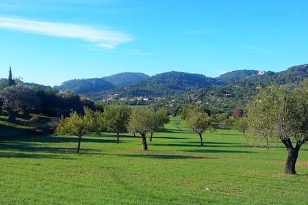 Serra de Tramuntana, lugar idílico - Leilighet