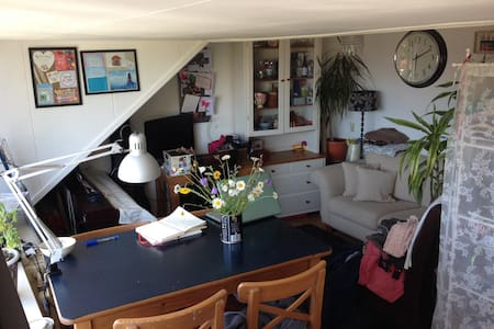 Single room available for July - Wageningen - House