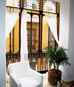 CarlosCañal/junto a la Catedral Wif - Apartment