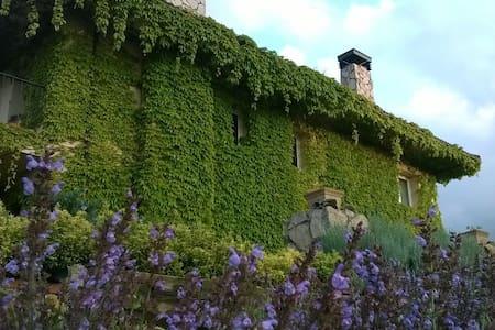 Casa en entorno natural en el centro de Asturias. - House