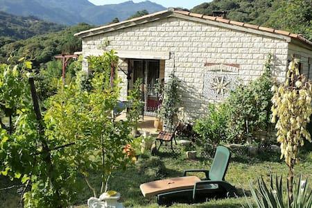 gîte région d'Ajaccio - Haus