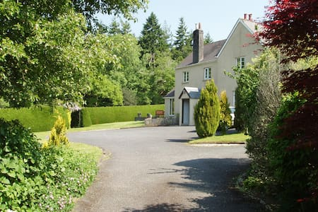 Old beamed Devon Farmhouse - Bed & Breakfast