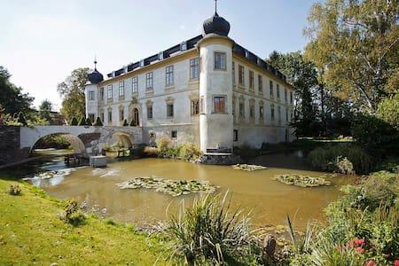 Chateau Třebešice - Třebešice - Schloss