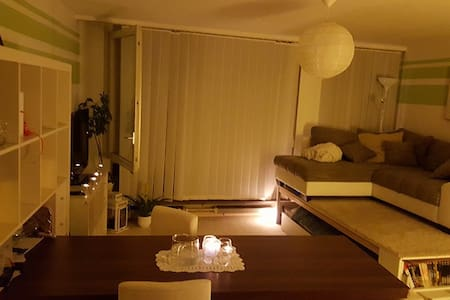 Lovely studio in central Basel - Appartement
