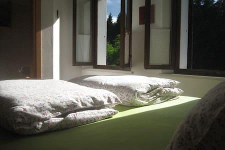 triple room in the woods - Fianema - Bed & Breakfast