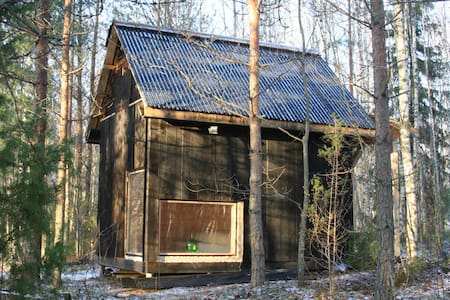 A cabin in the forest - Stuga