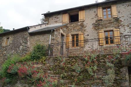 Maison de campagne rénovée au vert - Réquista