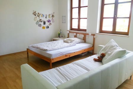 Frankfurt - Bright room near FFM airport - Apartemen
