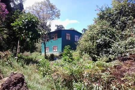 The Sanctuary Retreat - Copey - Villa