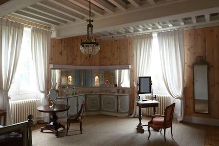 A castle for B&B in Salbris - Bed & Breakfast