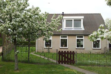Villa Schelphoek Zeeland - Dom