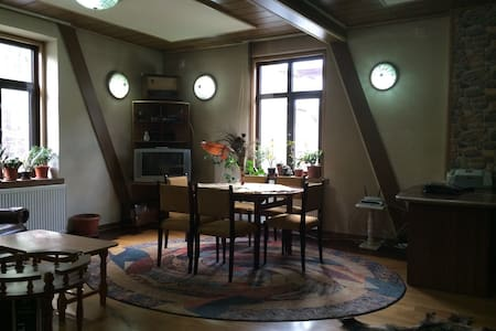Beautiful Peles Castle Apartment - Sinaia - Diğer