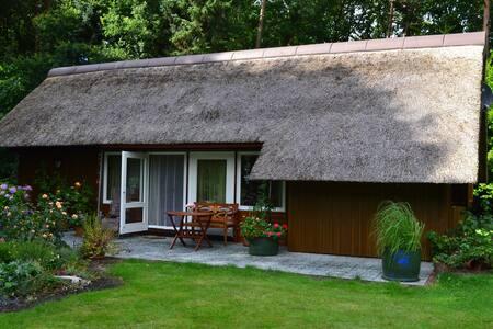 Waldhaus mit Schwimmbad und Sauna - Casa