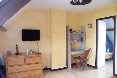 Chambre 16 m2 dans une villa - Haus