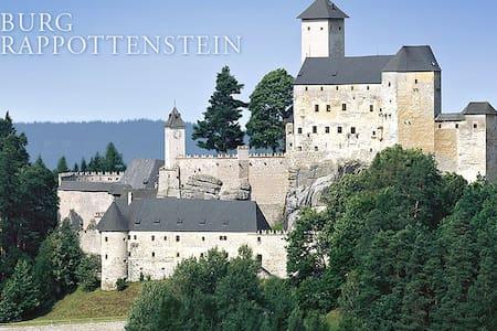 Wohnen in einem mittelalterlichen Gebäude - Rappottenstein