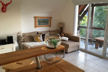 Apartement with terace and pool  - Blois