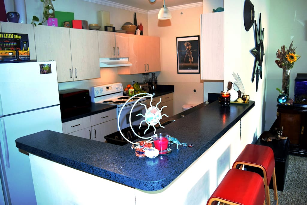 Fully equipped kitchen with microwave, toaster, blender, juicer and more.