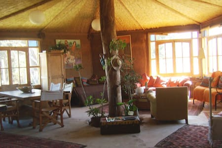 Elqui Valley Bed and Breakfast Chile in northern Chile, is the home of an artist located at a horse farm, just 27 km from the city of La Serena and 20 kms from Vicuña in Elqui I share my home with people who enjoy tranquility and country life.