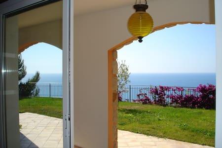 Villa bord de mer proche Monaco - Hus