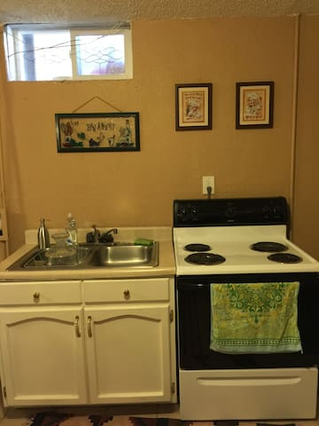 cozy 1bd basement level apartment apartments for rent in