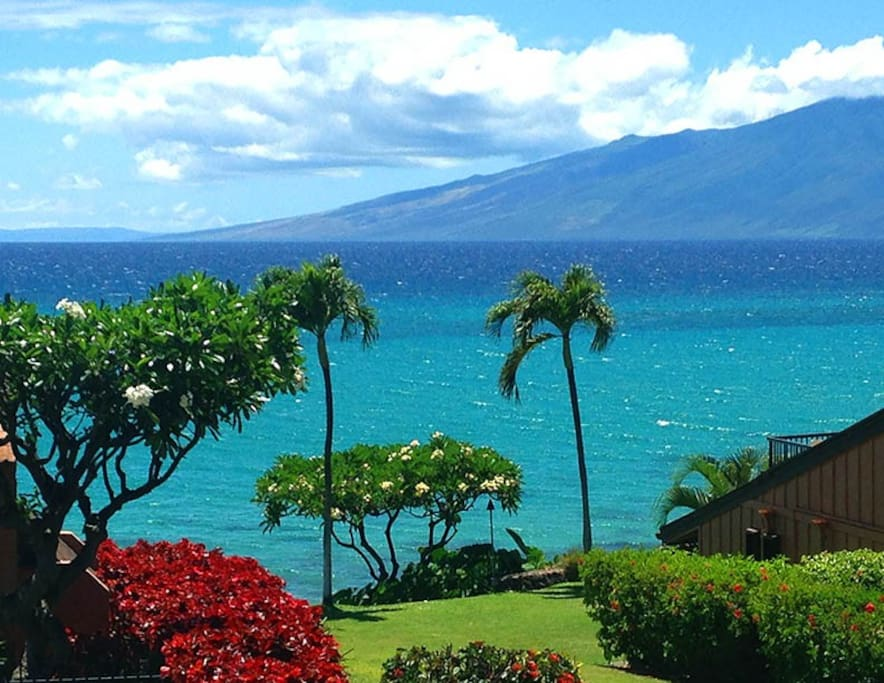 This is the ocean view you will see from the living room and Lanai