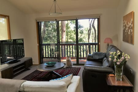 Tree house sanctuary - East Gosford - House
