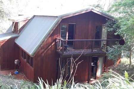 Forrest Treehouse Living Loving It - Casa