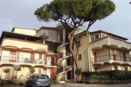 Number 12 - Lägenhet