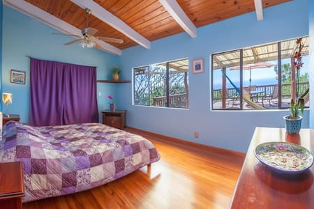 South Kona Country Home Ocean View