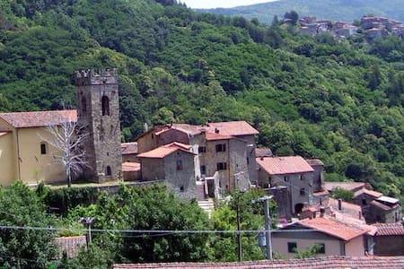 The old Fireplace - Lanciole - Villa