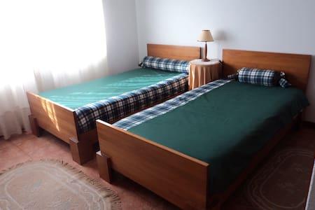Twin room in Tábua - Tábua - Appartamento