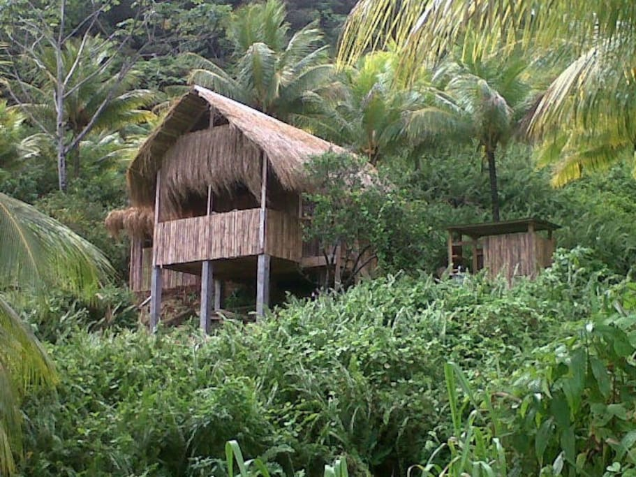 Carib Hut showing kitchen at side
