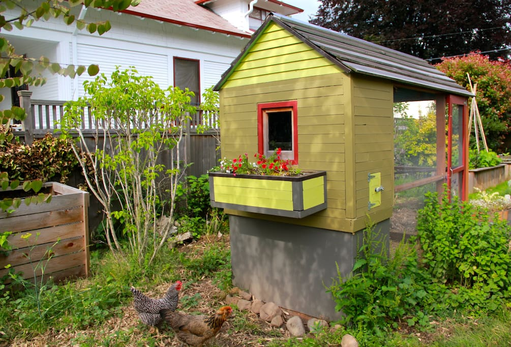 You'll pass the chicken coop on your way to the apartment