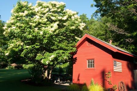 Charming garden cottage - Bristol - Cabin