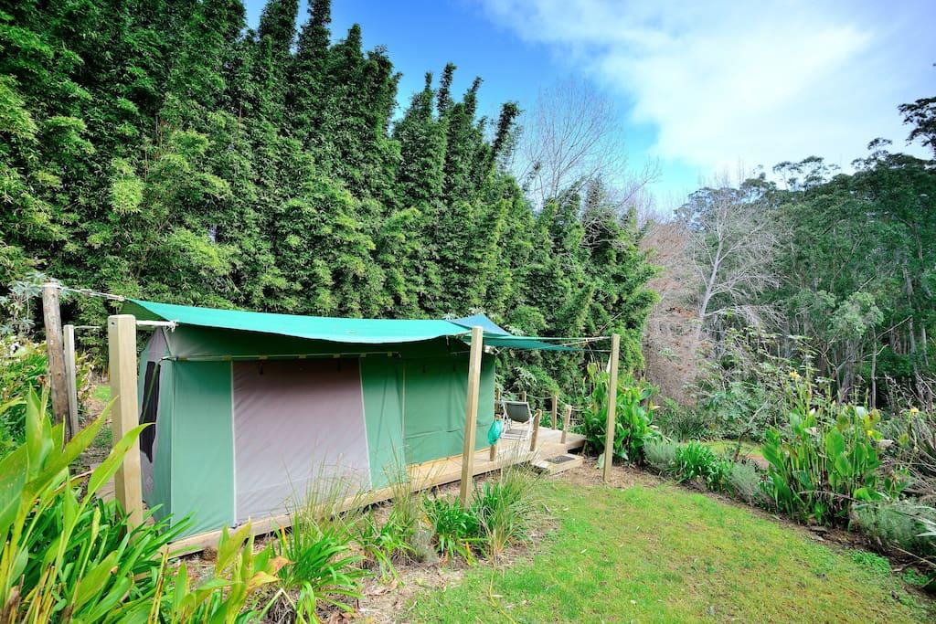 Luxury Deck-Mounted Safari Tent