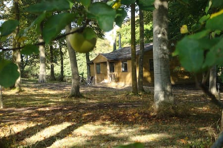 Luxurious cabin in the woods near Longleat - Cabana