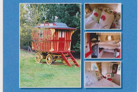 Burton Gypsy Wagon - Essex - Chalet