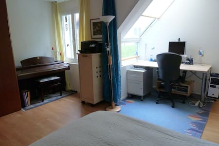 Cozy room for ladies only or couple - Erlenbach - Apartment