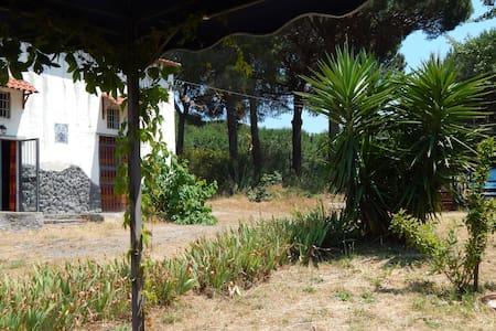 Casa vacanze nel Parco del Vesuvio - House
