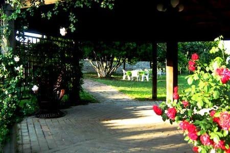 Casale Ara delle Rose Yellow Room - Bed & Breakfast