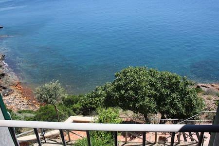 vista mozzafiato all'isola d'Elba6