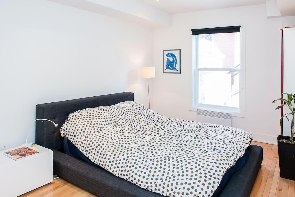 grand salon confortable avec téléviseur, Wii et lecteur DVD
